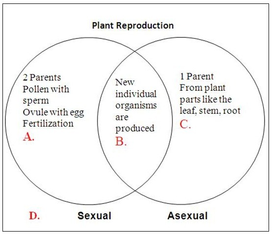 Compare asexual reprodustion and sexual reprodustion