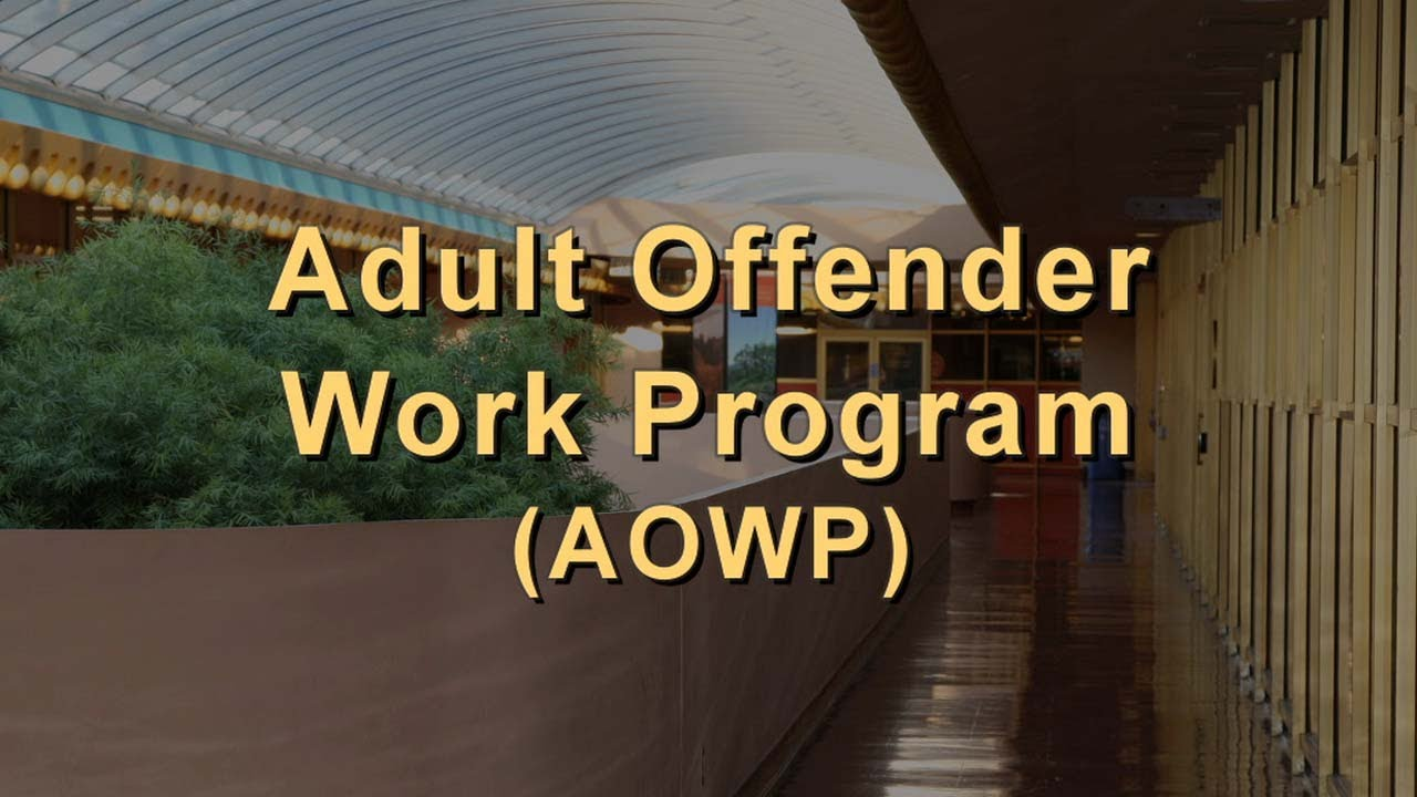 Adult work program