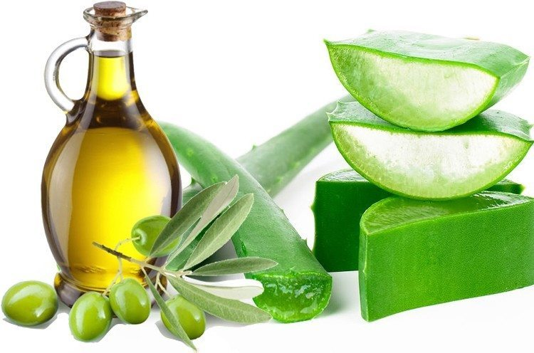 Aloe vera and olive oil for skin