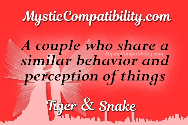 Snake and snake compatibility