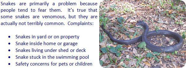 What will keep snakes away